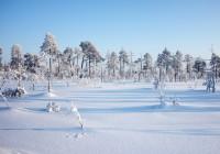 Зимние пейзажи. Фотограф Михаил Дронов