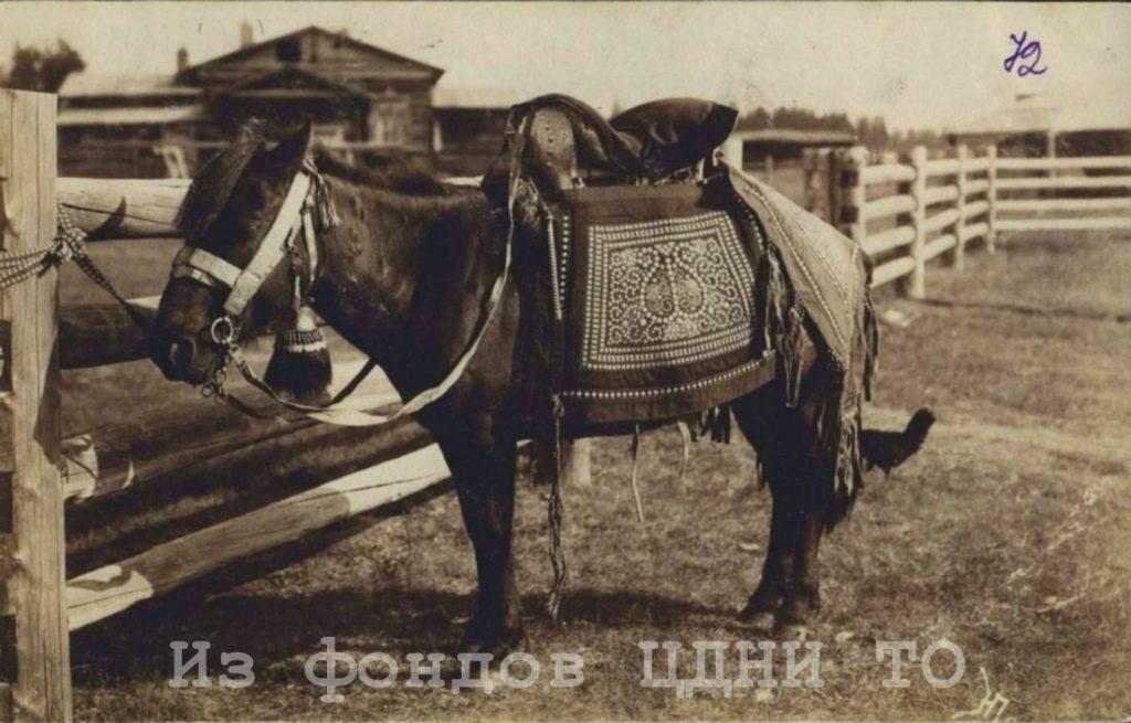Почтовые открытки природы и быта Якутии к. XIX- н. XX в.  Коллекция С. А. Малых, привезенная из ссылки в Якутскую область. 1904-1905 гг. ЦДНИ ТО. Ф. 5640. Оп. 1. Д. 39. № 72. Надпись на лицевой стороне:
